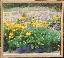 Wooden framed Canvas gifts