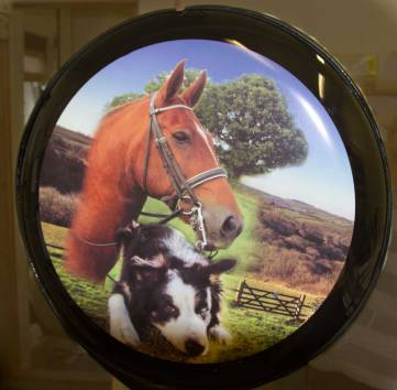 Full Colour Semi Rigid Wheel Cover with blended photos