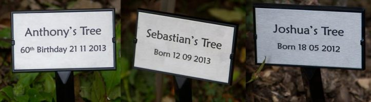 Celebrate an event by planting a tree. http://www.sign-maker.net/engraved/plant-stake-grave-marker.html