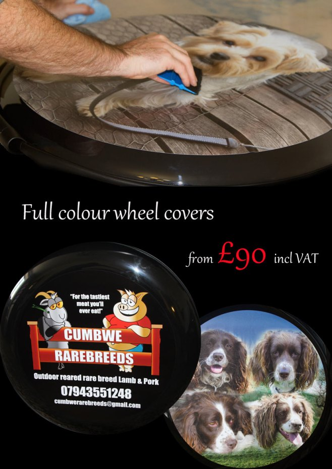 http://www.sign-maker.net/wheelcovers/digital-brochure/index.html