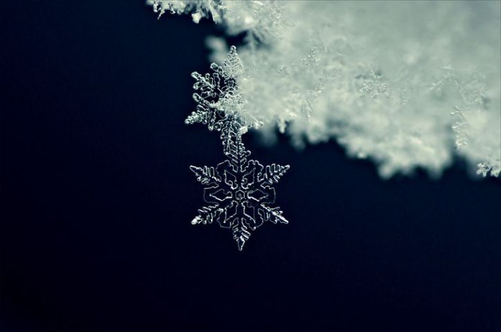 close-up-of-a-snowflake-519378367-5833b9005f9b58d5b1feede9