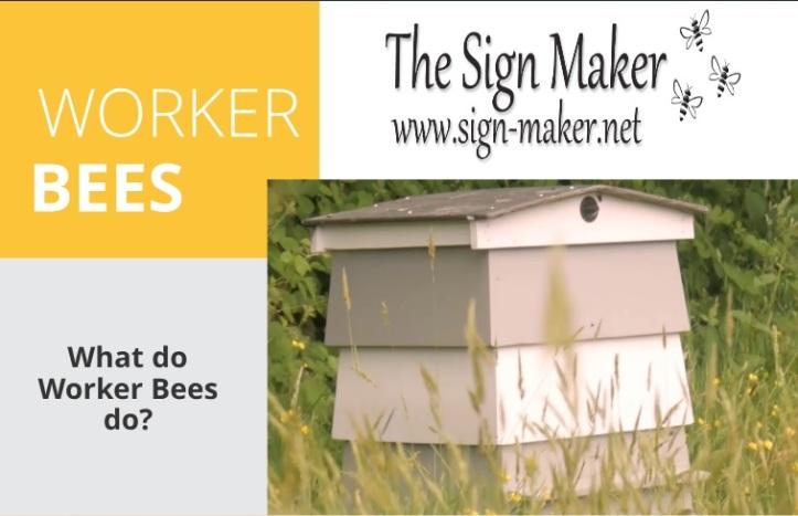 worker bees topper.jpg
