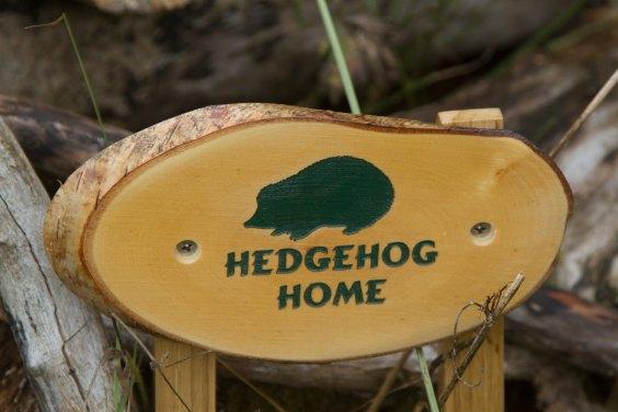 hedgehog-home.jpg